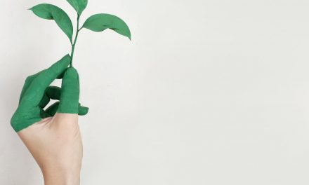 Profit Pemakaian Bungkusan Makanan Ramah Lingkungan